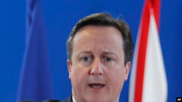 British Prime Minister David Cameron speaks during a media conference. (File Photo)