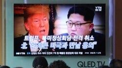 """[뉴스풍경 오디오] 미국 내 탈북자들 """"미-북 간 '신뢰 구축' 없는 정상회담 취소 놀랍지 않아"""""""