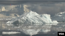 Greenpeace recently found one microplastic piece per liter in snow and seawater samples taken at Antarctica.