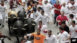 Revelers run next to Torrestrella ranch fighting bulls during the running of the bulls at the San Fermin festival, July 7, 2011, in Pamplona, Spain