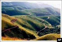 The view from Van Der Merwe's brewery on the high Long Tom Pass in South Africa's Mpumalanga province