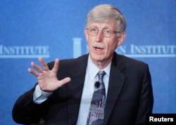 FILE - Francis Collins, director of the National Institutes of Health