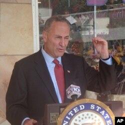纽约州民主党联邦参议员查克·舒默