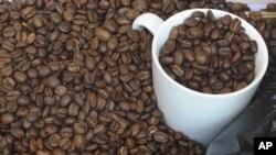 Menurut para ilmuwan Inggris, kopi sebagai bahan minuman yang paling digemari di dunia bisa menjadi korban perubahan iklim (foto: Dok).