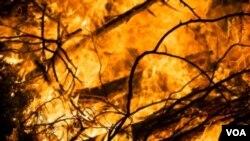 Upaya pemadaman kebakaran hutan di Sumatera mengalami rintangan karena situasi geografis permukaan tanah yang sulit.
