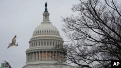 미 연방의사당. 도널드 트럼프 미국 대통령과 민주당의 국경장벽 예산안 합의 도출 실패로 지난달 22일 미국 연방 정부 일부가 폐쇄됐다.