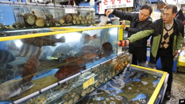 Seoul city officials check radiation levels of live fish during a photo call for the media at the Garak-dong agricultural and marine products market in Seoul, March 29, 2011
