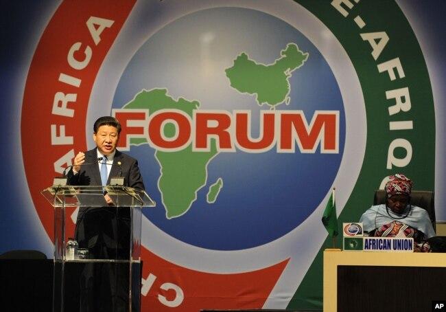 在南非的约翰内斯堡,中国国家主席习近平在2015年的中非合作论上讲话