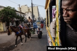 A passenger looks out the window of a car rapide as a horse cart passes in Dakar, Senegal. (R. Shryock/VOA)