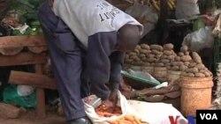 聯合國糧農組織發起全球節約糧食活動