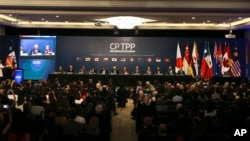 Chile's President Michelle Bachelet and representatives of the eleven countries take part in the signing ceremony agree the Comprehensive and Progressive Agreement for Trans-Pacific Partnership, CP TPP, in Santiago, Chile, Thursday, March 8, 2018. (AP Photo/Esteban Felix)