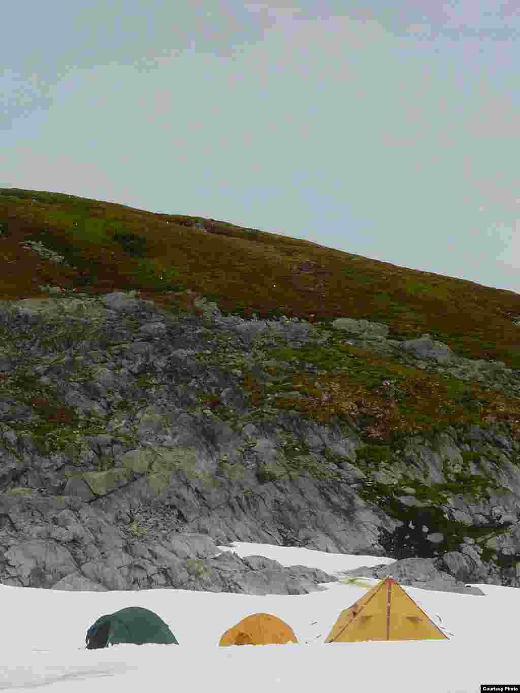 Los investigadores visitaron la isla Verde, la isla Berthelot, y observaron entre el musgo a los cormoranes de ojos azules. (Dan Charman/Matt Amesbury)