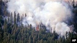 Asap membubung dari kebakaran hutan di bukit di atas Twisp, negara bagian Washington (21/8). (AP/Elaine Thompson)