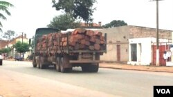Dezenas de camiões com madeira retidos em Malanje - 2:38
