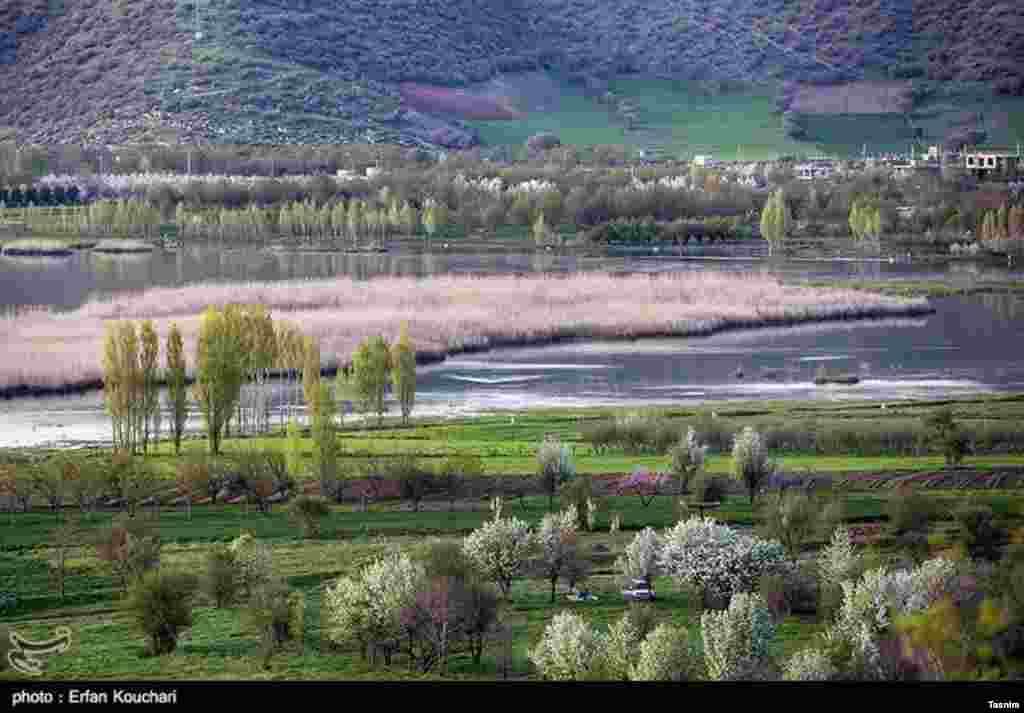 دریاچه زریوار - استان کردستان عکس: عرفان کوچاری