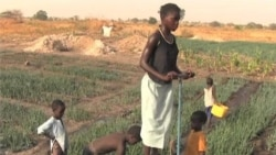 USAID Prioritizes to Boost Impact in Africa
