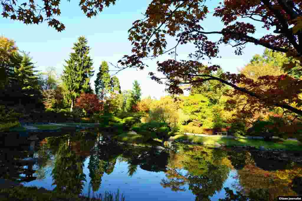 Bóng hồ (Ảnh độc giả Bao Nguyen, Seattle, Washington)
