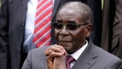 Land Reform Lifted Families From Poverty President Mugabe Tells World Leaders