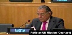 منیر اکرام، اقوام متحدہ کے لیے پاکستان کے سفارت کار