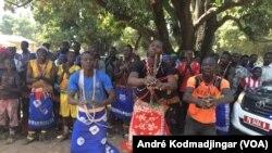 Un groupe folklorique exhibe des pas de danse lors du lancement de la campagne de la distribution des moustiquaires dans la région du Mandoul au Sud du Tchad, 21 février 2017. (VOA/André Kodmadjingar)