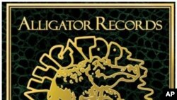 Alligator Records Celebrates 40th Anniversary