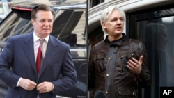 Manafort Assange