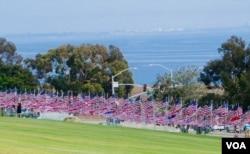 旗海面對平靜的太平洋(美國之音國符拍攝)