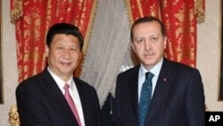 Chinese Vice President Xi Jinping (l) with Turkey's Prime Minister Recep Tayyip Erdogan in Istanbul, Turkey, February 21, 2012.
