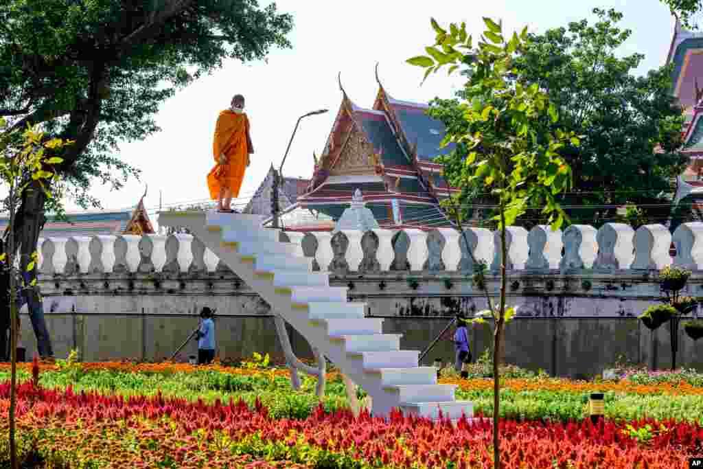 Bangkok istirohat bog'lari. Tailand.