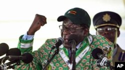 Zimbabwean President Robert Mugabe addresses his supporters at the party's conference in Mutare, east of Harare, 17 Dec 2010