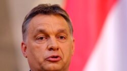 Civil Society Intimidation In Hungary