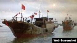 掛中國國旗的漁船船隊(網絡截屏)