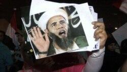 Египтяне критикуют миротворческие усилия США