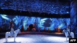 یک نمایش زنده و پرتحرک روی صحنه، قدرت و زیبایی اسب ها را به نمایش می گذارد