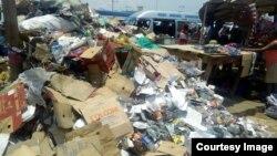 Harare litter