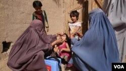 افغان مېرمنې ماشومانو ته د واکسین ورکولو پرمهال