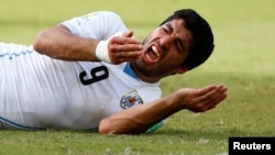 Uruguay's Luis Suarez reacts after clashing with Italy's Giorgio Chiellini during their 2014 World Cup Group D soccer match at the Dunas arena in Natal, June 24, 2014.