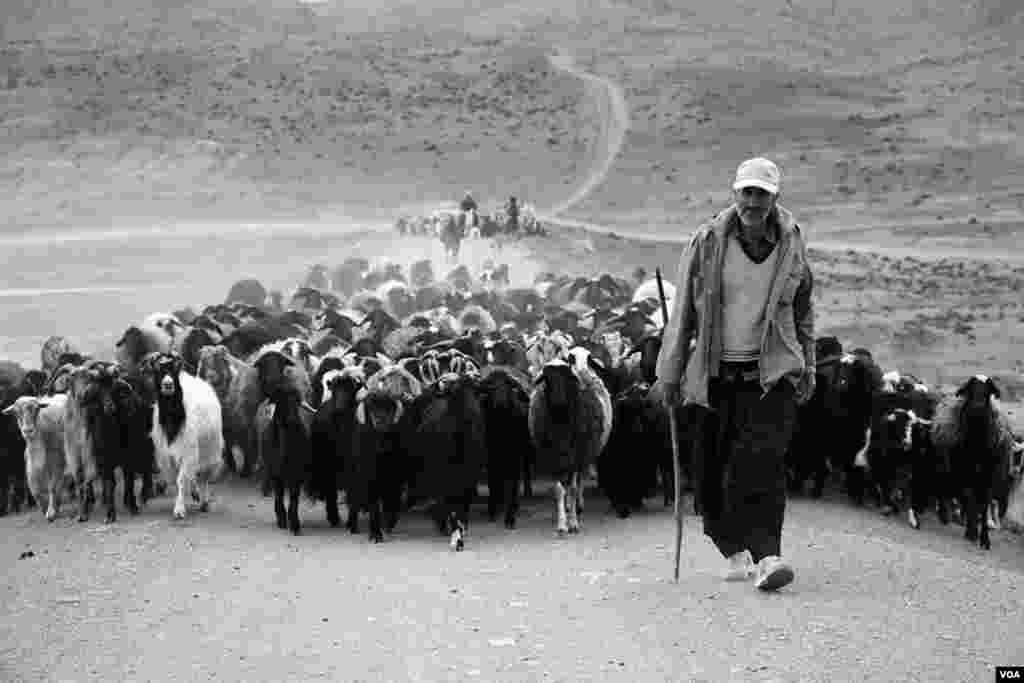 اراک- سد خاکی روستای یاسبلاغ عکس: محسن غریبی میلاجرد (ارسالی شما)