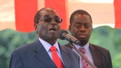 Report on Mugabe India Trip Filed By Patricia Mudadigwa
