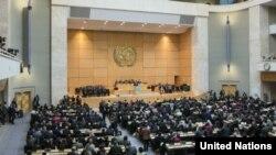 世界卫生大会(联合国世界卫生组织网站照片)