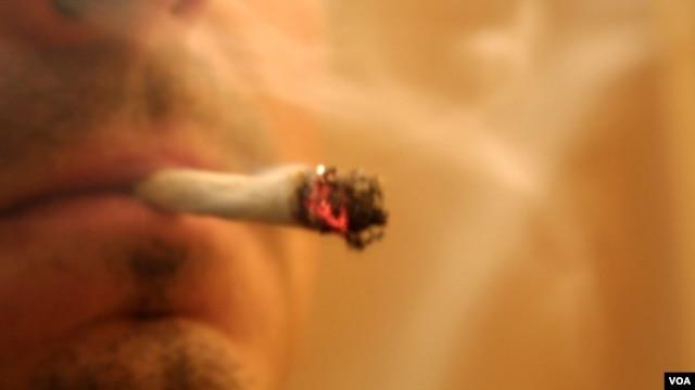 Varios estados en el país ya permiten el consumo de marihuana pero sólo de forma regulada y con fines medicinales.