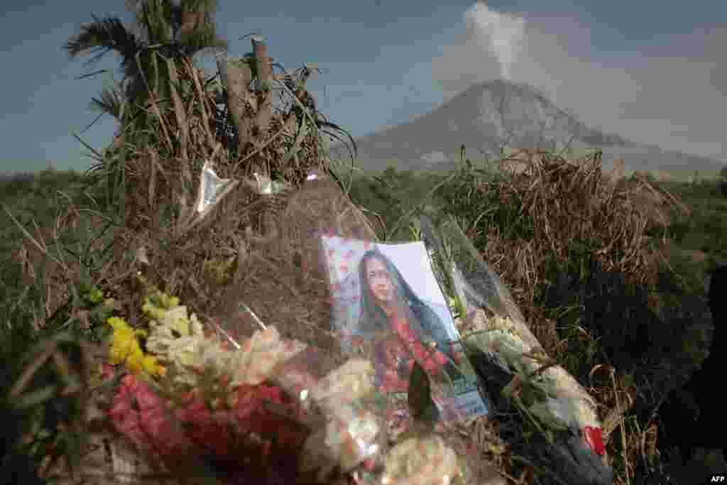 Flowers and a portrait of a victim, killed during the eruption of Mt. Sinabung volcano, are left by relatives on a hill in Karo district with the volcano in the background. The volcanic eruption killed 15 people in a weekend and hot ash and rocks shot high into the air again on February 3, halting a search for any more victims.