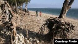 Les Petits Etats insulaires d'Afrique vulnérables aux catastrophes naturelles et environnementales