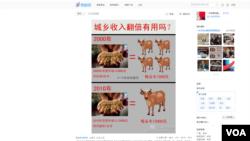 Warga Tiongkok mulai bisa memberikan komentar mengenai kebijakan pemerintah melalui Weibo, mikroblog seperti twitter yang populer di negara itu. Gambar ini menunjukkan diskusi terkait janji Hu Jintao untuk menggandakan pendapatan warga Tiongkok tahun 2020 (Foto: dok).