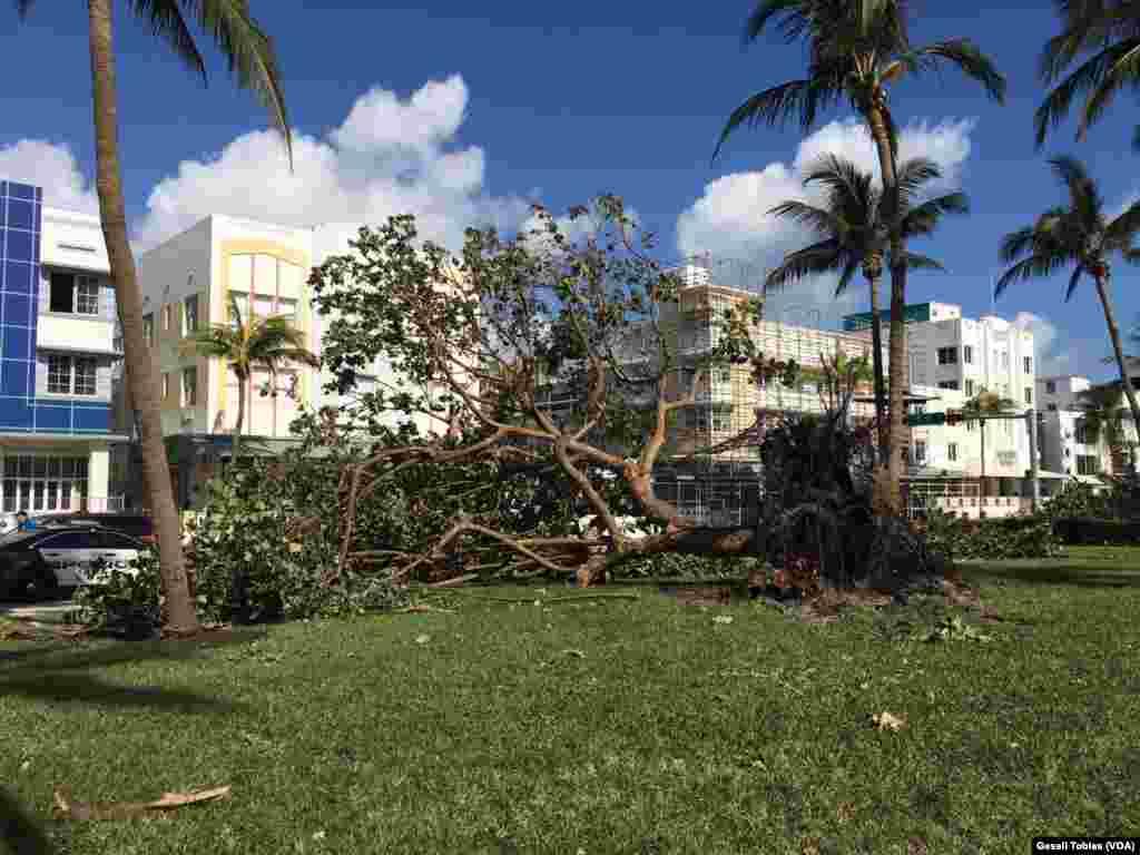 Según la Agencia Federal para el Manejo de Emergencias de Estados Unidos, el 65 por ciento de los hogares sufrieron daños mayores tras el paso de Irma.