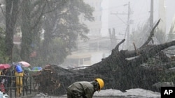 A worker inspects damaged electrical post as Typhoon Nanmadol uprooted big trees in Baguio City, north of Manila, Philippines, August 27, 2011