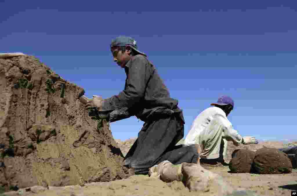 کابل کے نواحی علاقے میں اینٹوں کے کارخانے میں مزدوری کرنے والے دس سالہ کامران کے لیے اسکول ایک لگژری ہے جس کا خرچ اس کا خاندان برداشت نہیں کر سکتا۔ کامران کے والد عتیق اللہ کہتے ہیں کہ آج کے دور میں کام کیے بغیر زندہ رہنا مشکل ہے۔