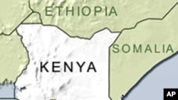 Kenyan Cattle Rustlers Kill 11