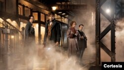 """Salah satu adegan dalam film """"Fantastic Beasts and Where to Find Them'' (foto: ilustrasi)."""