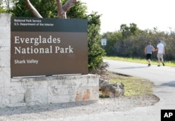 Visitors walk past a sign for Everglades National Park as they enter from overflow parking, Jan. 2, 2019, in Everglades National Park, Fla. Human feces, overflowing garbage, illegal off-roading and other damaging behavior in fragile areas were beginning to overwhelm some of the West's iconic national parks, as a partial government shutdown left the areas open to visitors but with little staff on duty.